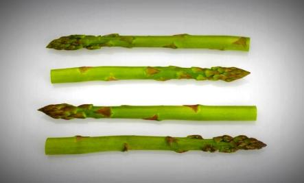 asparagus powerfood