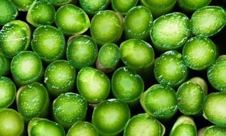 asparagus ends
