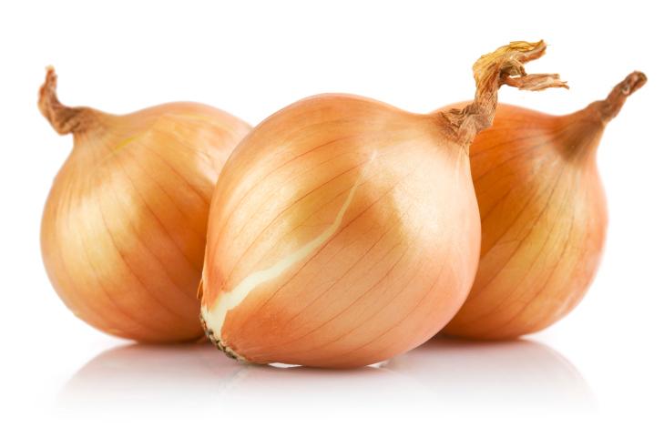 fresh onions vegetables