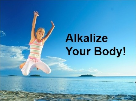 alkalize weekend web bootcamp