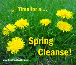Spring cleanse 2-250