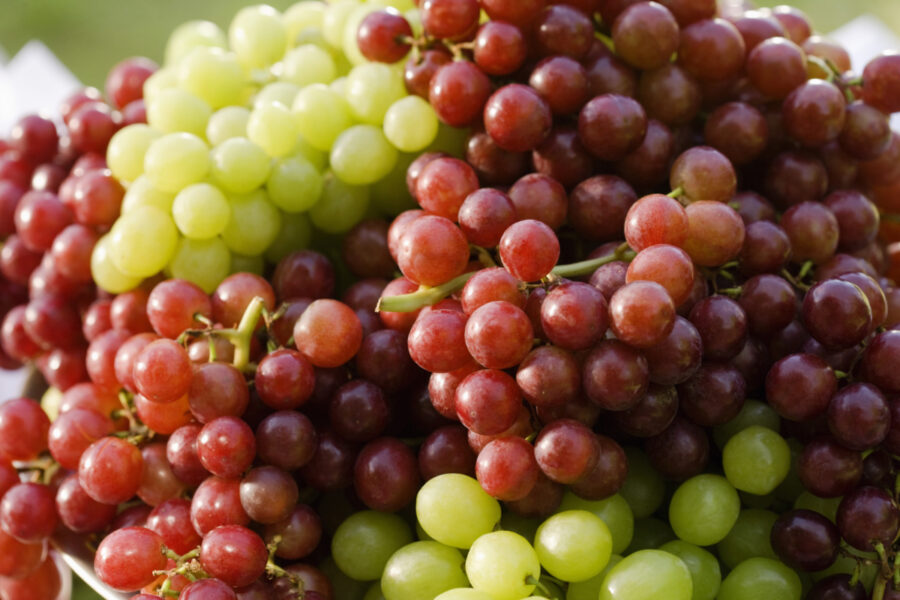 Fresh Grapes Are So Good for You