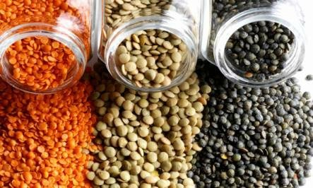 Photo of The Mighty Lentil – Tiny Superfood