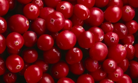 Cranberries: The Little Red Powerfood with a Big Punch