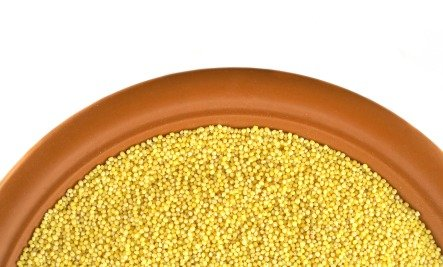 millet gluten-free grain