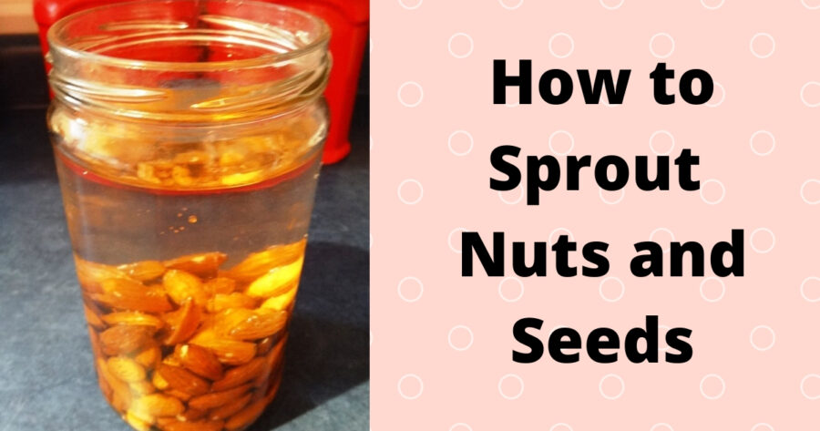 Sprouting nuts seeds