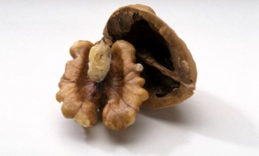 Photo of 9 Benefits of Walnuts – the Crinkly Powerfood