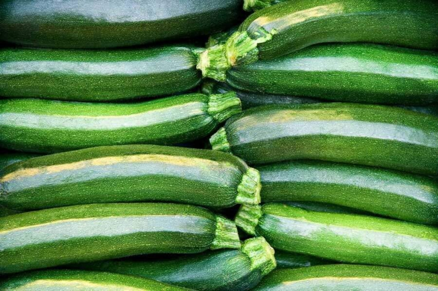 Photo of Zucchini Love
