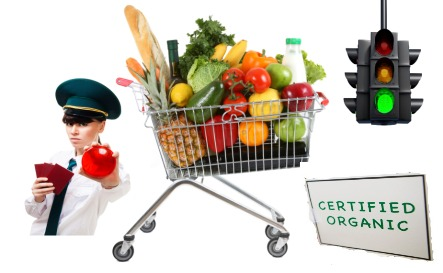 Photo of Dirty Dozen – 12 Foods You MUST Eat Organic