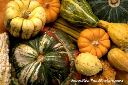 Photo of Squash – Powerfood For All Seasons