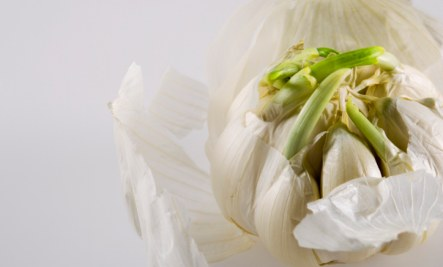 garlic has unique health benefits