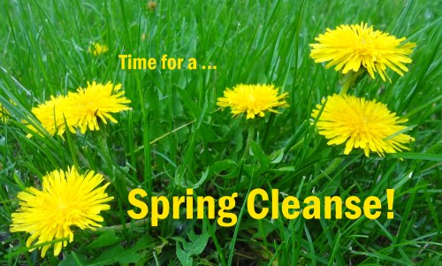 Spring cleanse 500