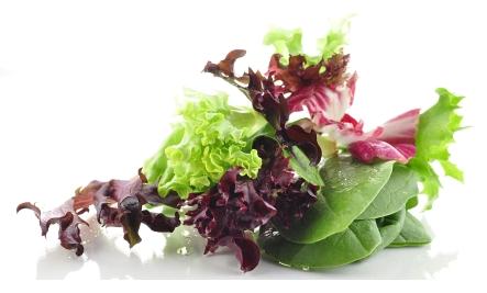 salad ingredients on white