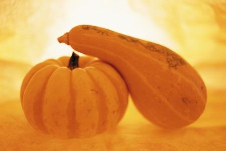 KABOCHA squash and pumpkin