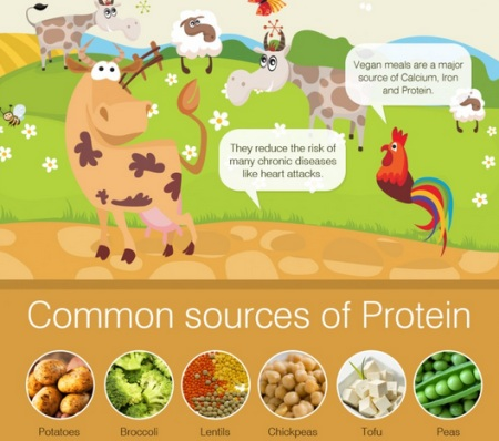 meatless infographic