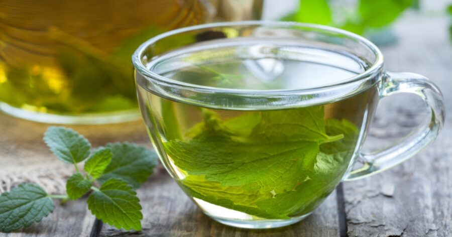 Photo of Fresh Mint Tea is Refreshing and Energizing