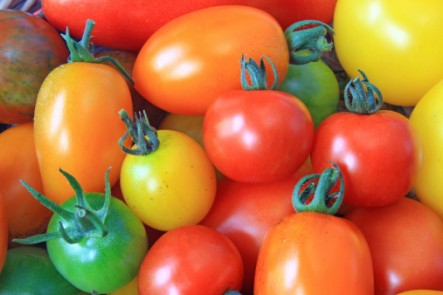 There are many varieties of tomatoes
