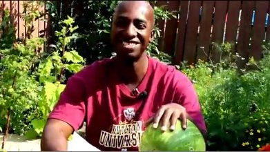 Watermelon Health Benefits: Poetic Fun by Roylin Picou