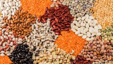 Photo of Red, White, Orange and Brown Pulses Are Superfoods