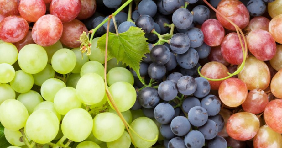 Photo of Fresh Grapes Are So Good for You