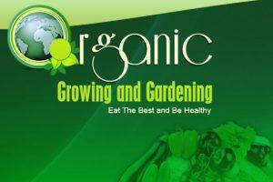 Organic Growing earth day