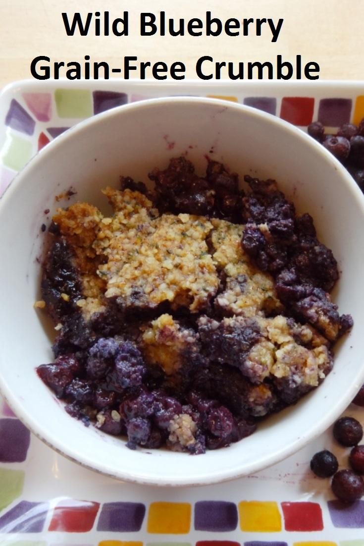 Wild Blueberry Grain-Free Crumble