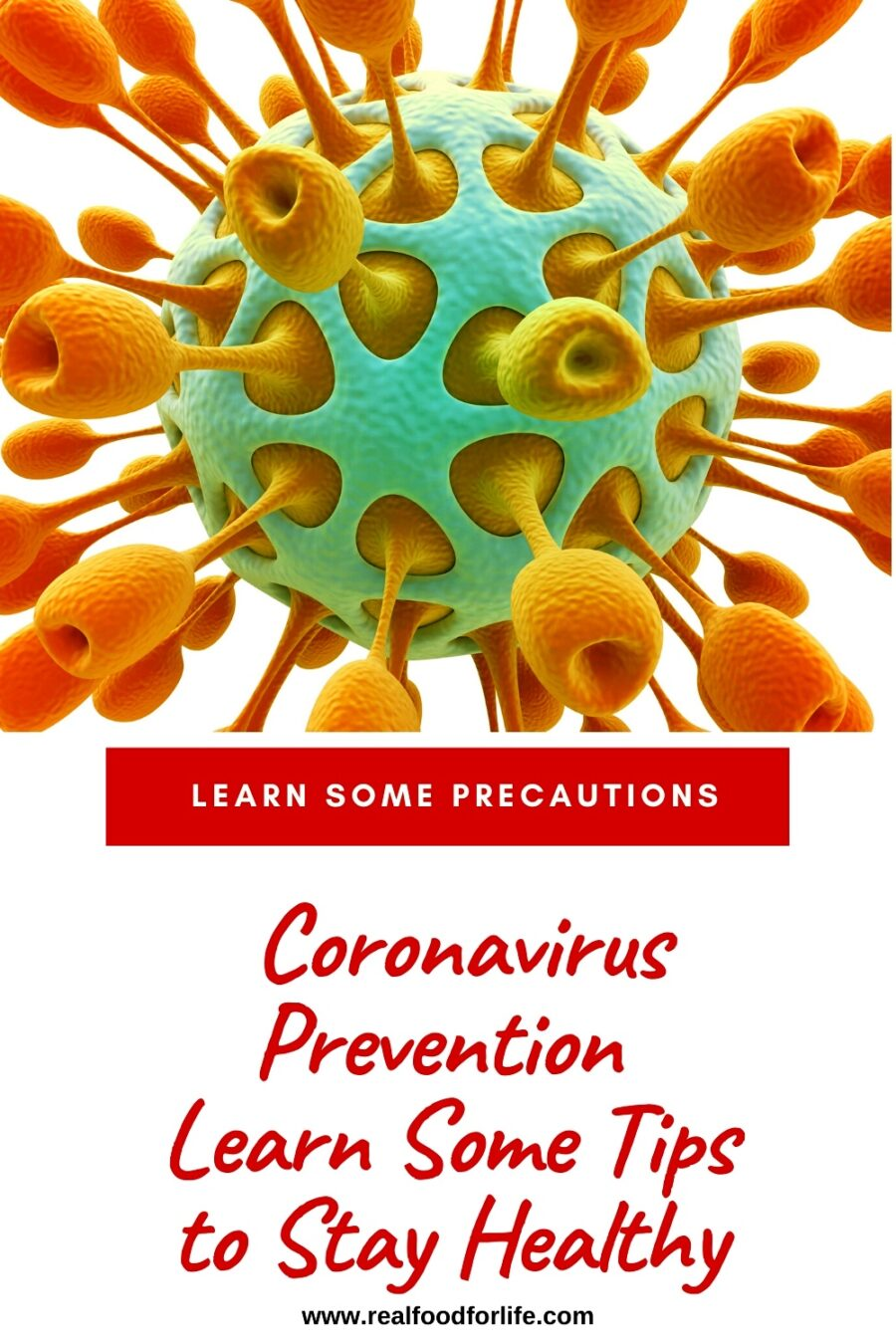 Coronavirus Prevention immune system