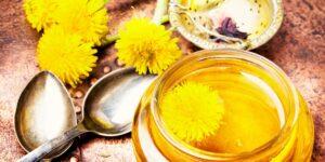 Dandelion Flower Syrup recipe