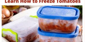 Freezing Stewed Tomatoes with Skins